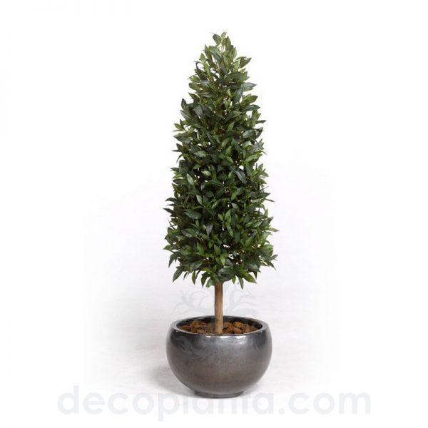 Árbol artificial de Laurel de forma cónica con un alto nivel de realismo