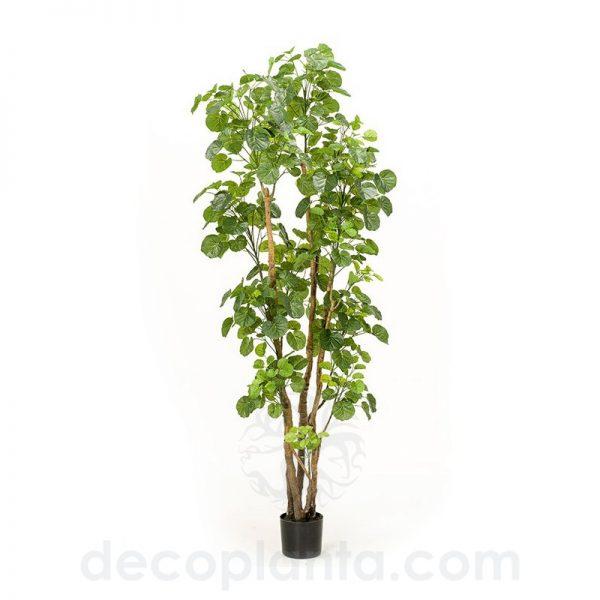 árbol ARALIA artificial de alto realismo
