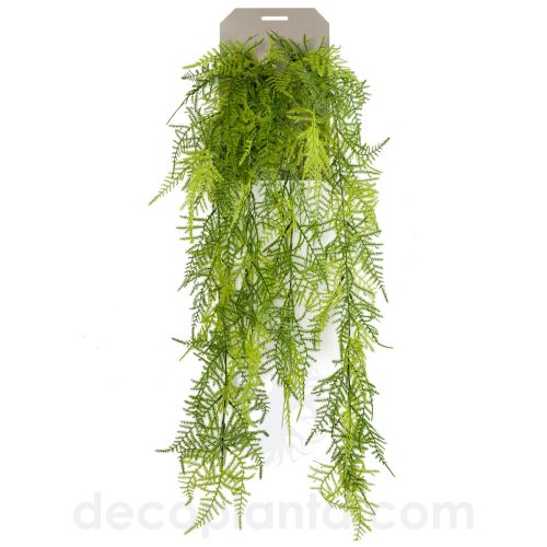 Planta colgante artificial, HELECHO PLUMOSO