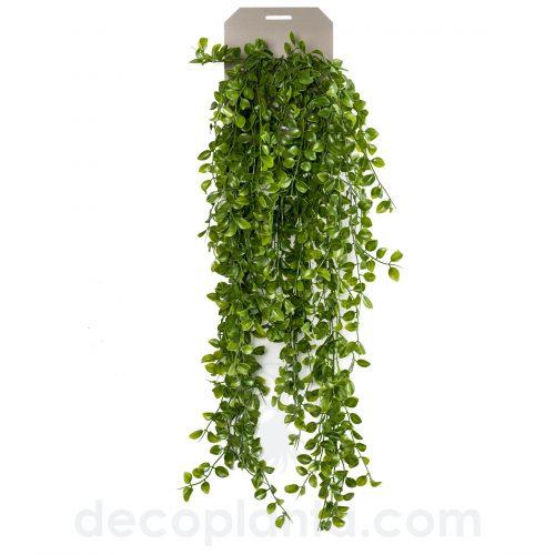 Planta Colgante artificial FICUS PUMILA de 80 cm de largo para decorar interiores