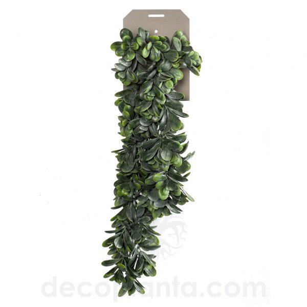 Planta Colgante artificial CRASSULA OVATA de 80 cm de largo