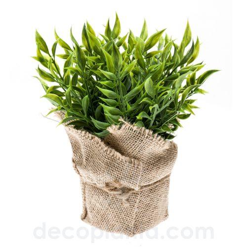 Arbusto RUSCUS artificial de 20 cm de altura, en maceta de tela.