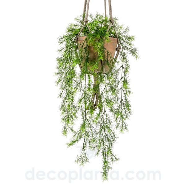Planta Colgante ASPARAGUS SPRENGERI o Helecho Espárrago artificial para colgar del Techo