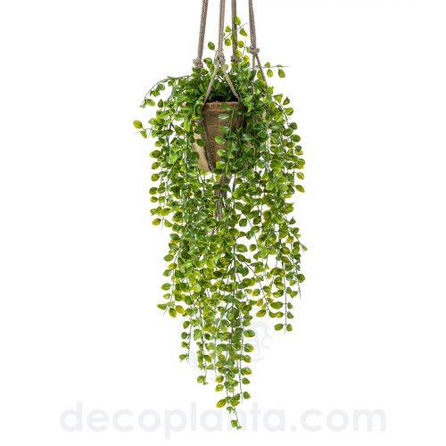 Planta Colgante de techo artificial FICUS PUMILA de 80 cm de largo