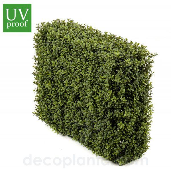 Seto de BOJ o planta Valla artificial de 50 cm de altura y 70 cm de largo