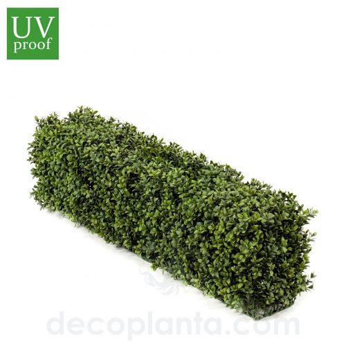 Seto de BOJ o planta Valla artificial de 25 cm de altura y 100 cm de largo