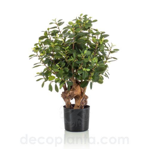 árbol FICUS BOTANIC artificial de 70 cm de alto