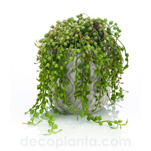 Planta de Senecio artificial mini de 15 cm de altura total, con jardinera de cemento blanco roto de 15 cm.