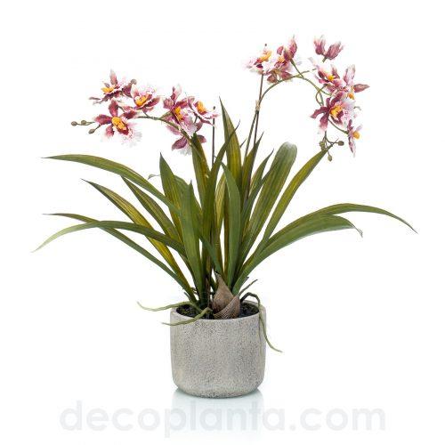 Planta Oncidio artificial color burdeos, con base frondosa de hojas verdes y jardinera de cerámica. Altura total 45 cm