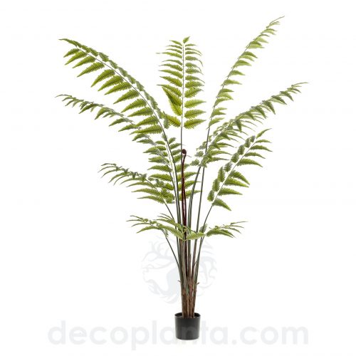 Árbol FERN GREEN O HELECHO artificial, de 180 cm con ramas orientables y hoja luminosa de color verde intenso.